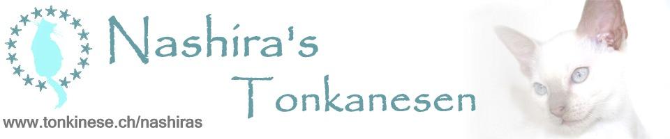 Nashira's Tonkanesen